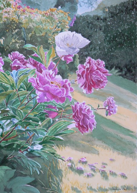 Peonies on the Bank, Bunclody