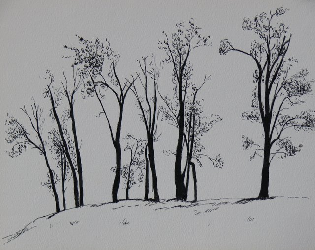 Trees on Skyline (unframed)